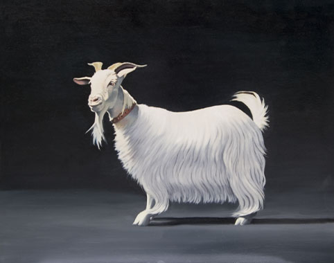 The Goat oil painting by Pat Baker
